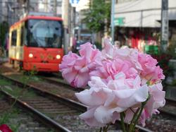 Rosefes19_4.png